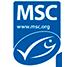 certificado de garantia msc