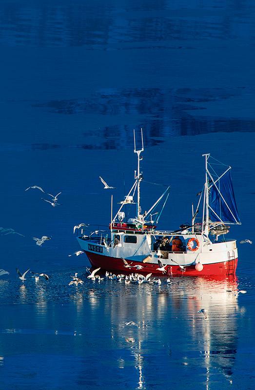 barco pesca sostenible